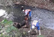 Durante los meses de marzo a noviembre del 2014 se realizaron 31 jornadas de limpieza de 12.5 kilómetros de ríos, drenes, canales, cunetas y rejillas en las zonas de mayor riesgo de inundación de la capital michoacana