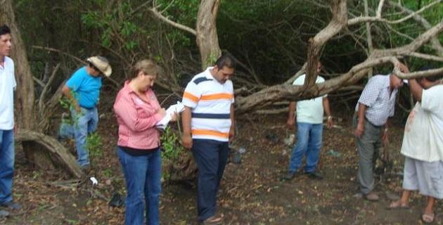 Con sobrevuelos ubicarán plagas en zonas boscosas de Michoacán   A ...
