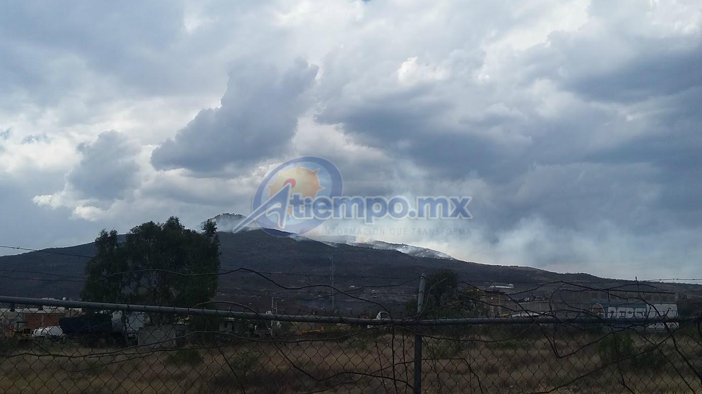 La Cofom admitió que estos incendios se presentan de manera recurrente ante la intención de cambio de uso de suelo para urbanización o siembra de cultivos no aptos para el sitio