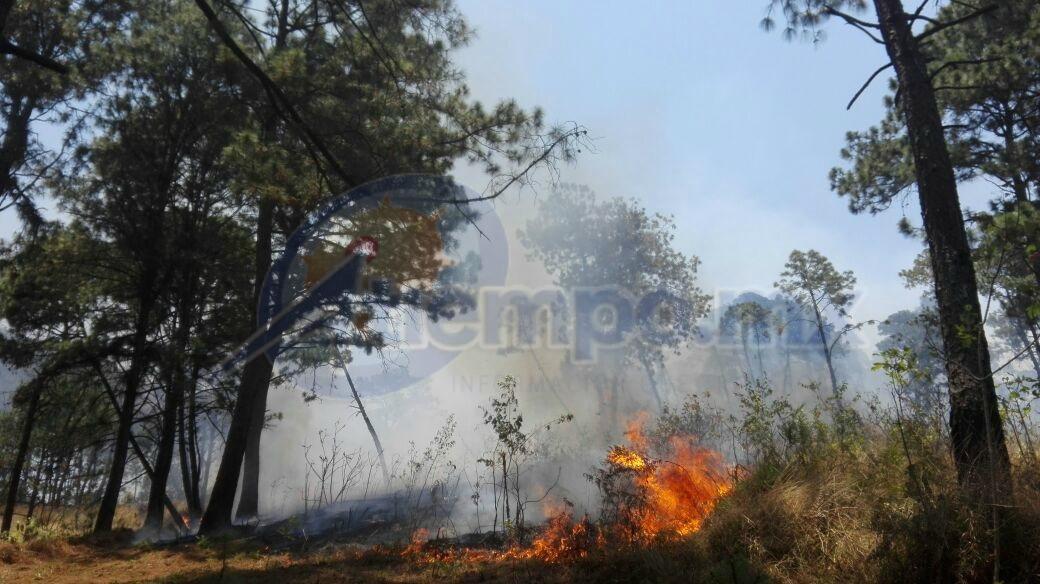 Se incorporaron 3 helicópteros para el combate del incendio, uno de la Policía Federal, uno procedente de Guadalajara y uno más de Pachuca (FOTOS: FRANCISCO ALBERTO SOTOMAYOR)