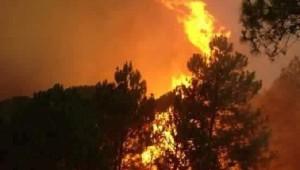 Persisten los incendios forestales en distintos puntos del estado de Michoacán (FOTO: WEBCAMS MÉXICO)