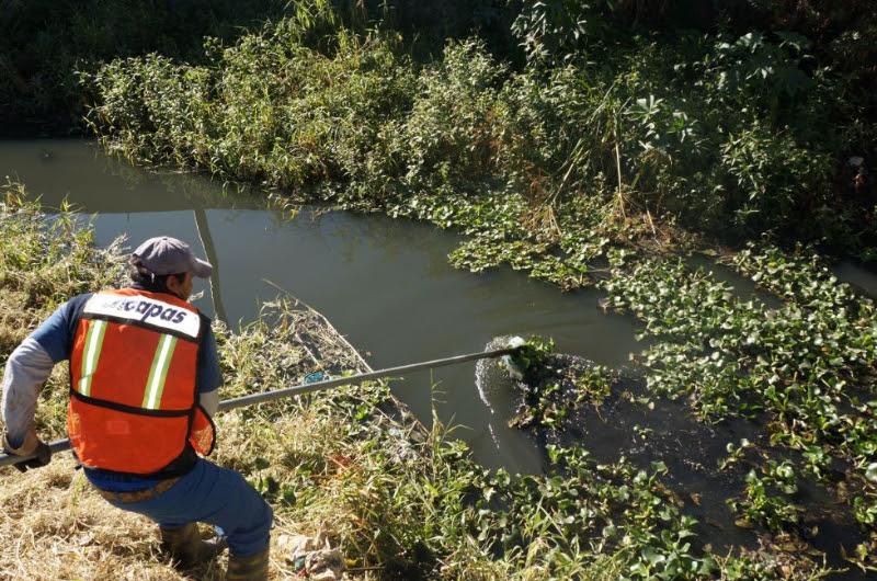 Cabe recordar que la capital de Michoacán tiene 12 drenes que son monitoreados por el OOAPAS