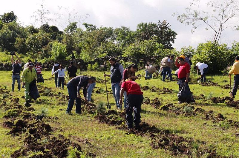 Esta actividad forma parte de las políticas ambientales que impulsa el Ayuntamiento de Morelia, que encabeza el alcalde Alfonso Martínez
