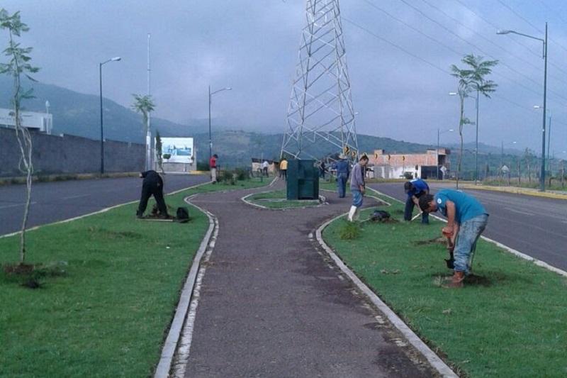 Refuerza Ayuntamiento de Morelia jornadas de reforestación en la capital michoacana
