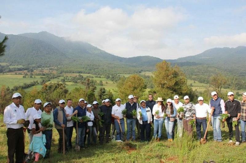 La campaña de reforestación en Cuanajo, surge ante el interés de los ciudadanos de dicha localidad, quienes manifestaron su preocupación por la tala clandestina y  el cambio de uso de suelo