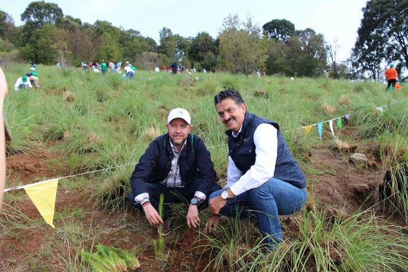 Este día, simultáneamente, se hicieron tres reforestaciones significativas en Michoacán, una se realiza en el Cerro de la Cruz, en la ciudad de Uruapan, y otra más en el cerro La Beata, en Zamora