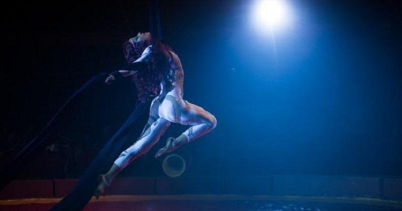 Un cuento de circo & a Love Song es la historia de Refugio, un niño nacido en el circo que se embarca en la búsqueda de su primer amor perdido años atrás. Una historia de esperanza, redención y de los azares del destino.