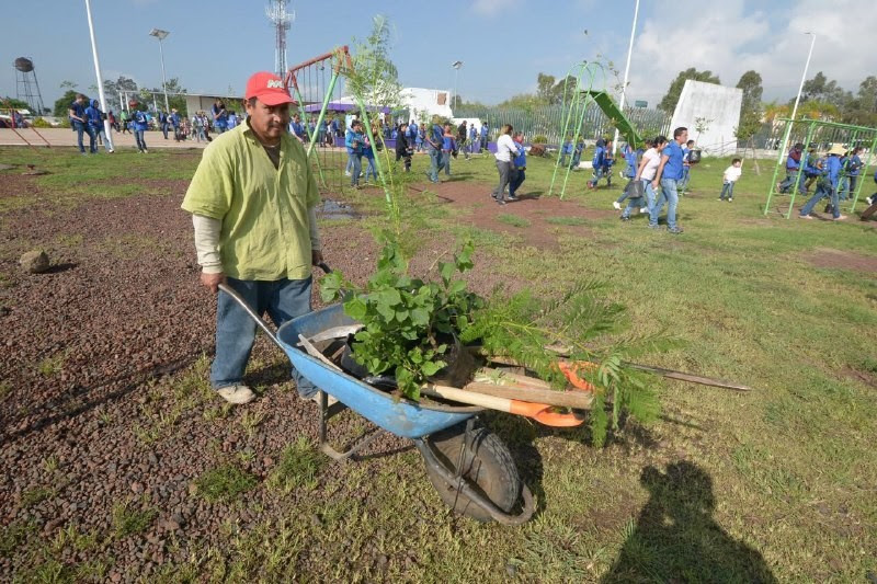 La Jornada concluyó en la Unidad Deportiva Miguel Hidalgo, donde se sembraron 600 plantas