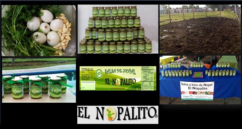 """Las bases de la Biotecnología Alimentaria son aplicadas al área del proceso productivo de la empresa """"El Nopalito"""""""