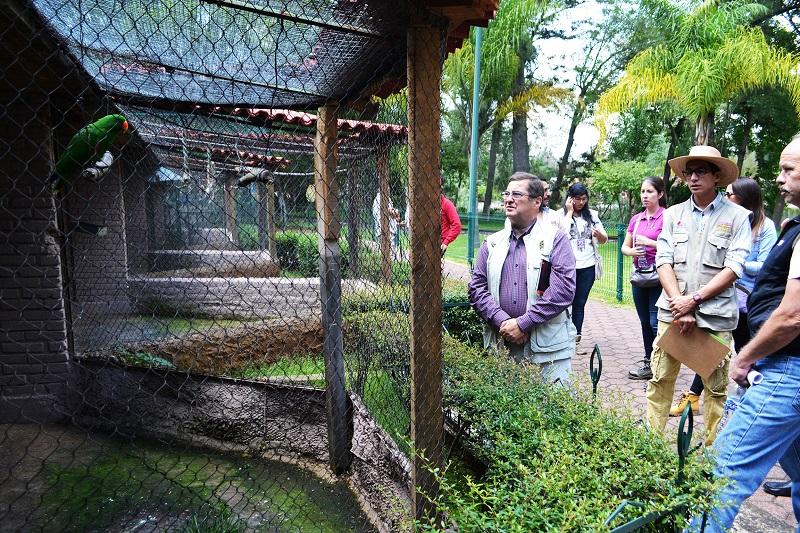 Durante su recorrido tuvo la oportunidad de observar la gran variedad de ejemplares que existen y de los cuidados que el personal tiene para mejorar la permanencia de las especies en este recinto