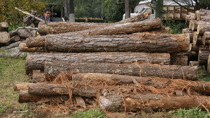 Se logró determinar que existen terrenos forestales con cambios de uso de suelo, con identificación en la Zona Voluntaria de Conservación, en los cuales existe replantación de aguacate y huertos