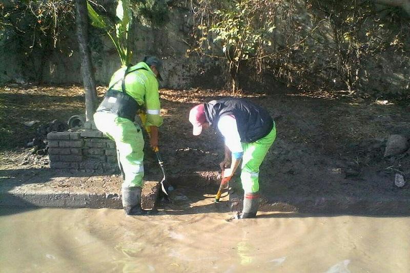 En el Boulevard García de León se implementará un operativo para supervisar que no haya desechos en las calles