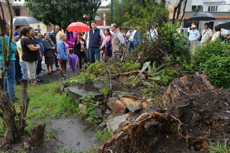 También reiniciaron los trabajos de reencarpetamiento en la calle Manuel Buendía