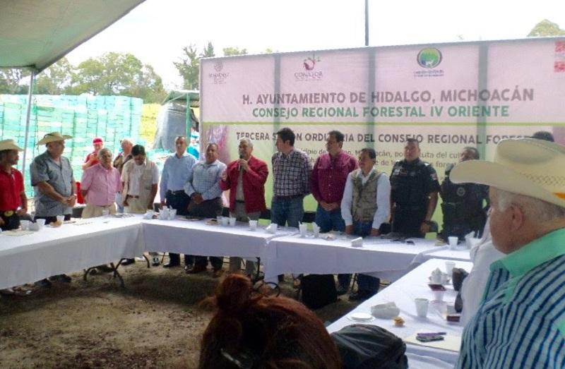 Este Programa, tendrá énfasis en la protección y conservación de los recursos forestales en la Zona de la Reserva de la Biósfera de la Mariposa Monarca