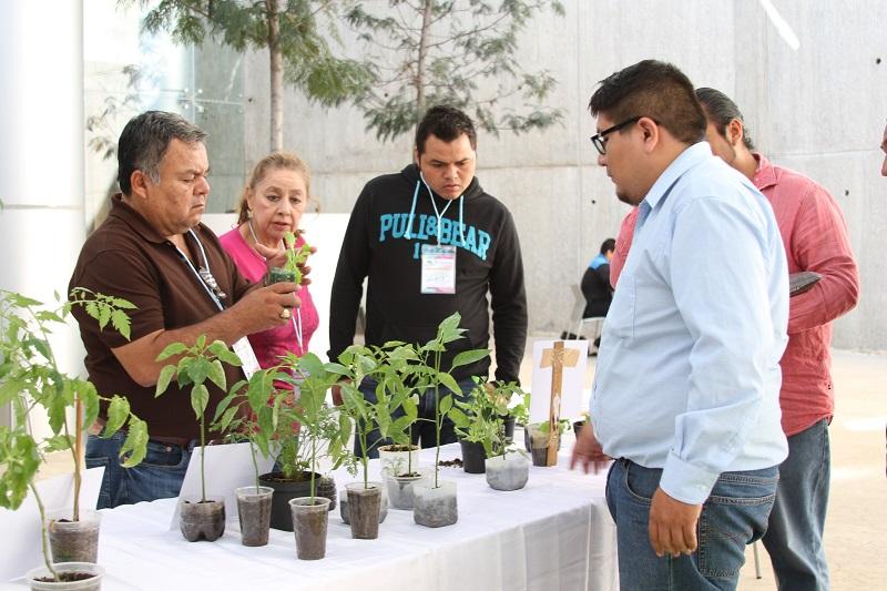 Se entregó semilla de hortalizas con la finalidad de instalar huertos en los centros escolares y fomentar una adecuada alimentación