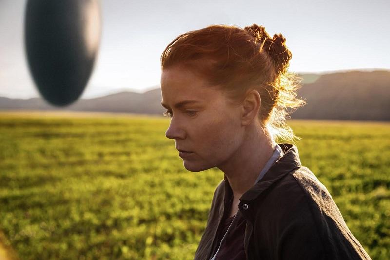 Es una película que sabe explotar adecuadamente el suspenso y la tristeza de la pérdida, sin duda estará entre lo mejor del género de este año que se aproxima a su final