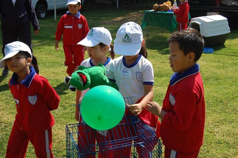 ChiquitIMSS es un modelo educativo con el que a través del juego, se aplican estrategias para generar en los niños cambios benéficos de vida que tienen que ver con hábitos alimenticios