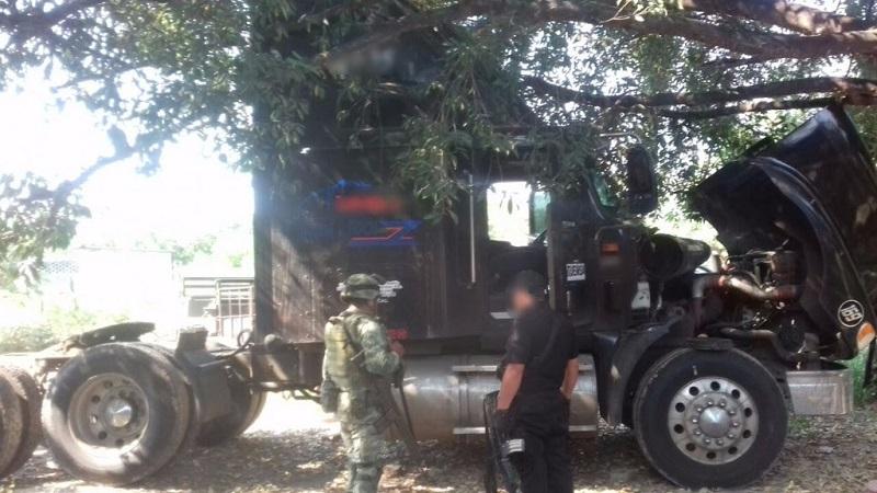 Los presuntos implicados, droga, armas de fuego, cargadores, madera, artículos y vehículos fueron puestos a disposición de la autoridad competente
