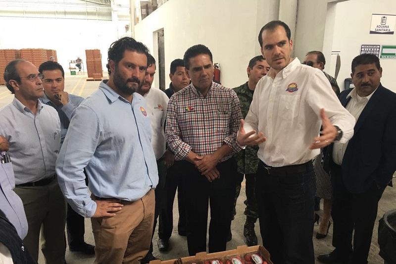 Michoacán ocupa el primer lugar nacional en producción de berries con más de 400 mil toneladas, además es el número uno también en valor de la producción de frutillas, muy por arriba de los estados de Baja California, Guanajuato, Jalisco y Puebla