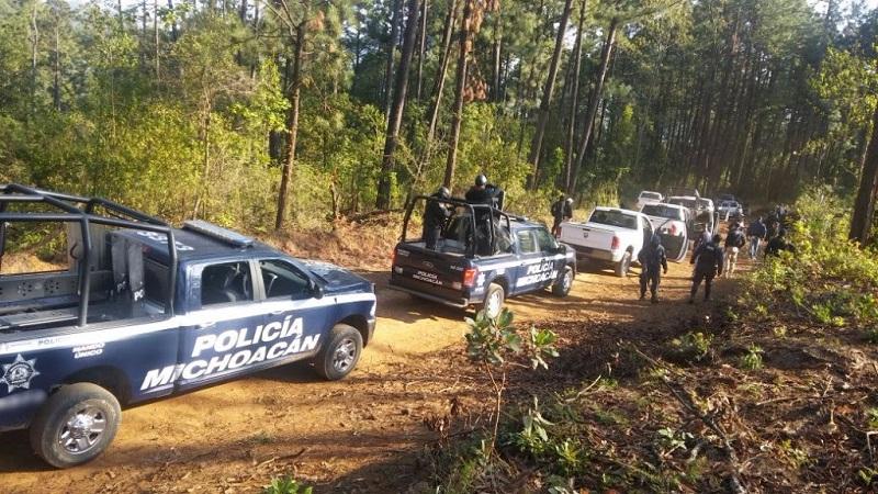 En la zona también se encontró una siembra de varias hectáreas de planta de aguacate, sitio donde los efectivos localizaron a 12 personas, quienes hacían surcos en las plantaciones
