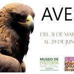 Mayores informes al teléfono (443) 312 0044 o en la página de Facebook: Museo de Historia Natural Universidad Michoacana