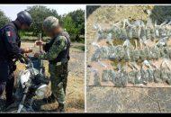 También se logró el decomiso de 22 armas de fuego, una granada, 15 cargadores y 347 cartuchos útiles