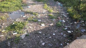El ejemplo más claro se puede ver en el río grande a la altura de la Avenida Siervo de la Nación donde aparte del olor fétido que desprende alrededor del mediodía y se extiende hasta la tarde, la basura se mantiene flotando sobre el río lo cual da un mal aspecto