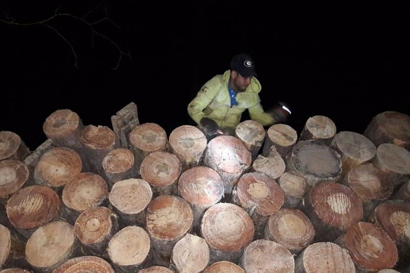En este ejercicio se incautaron 5 metros cúbicos de madera ilegal, y se hizo una revisión a otros camiones que trabajan de manera legal, con programas de manejo para evitar la deforestación