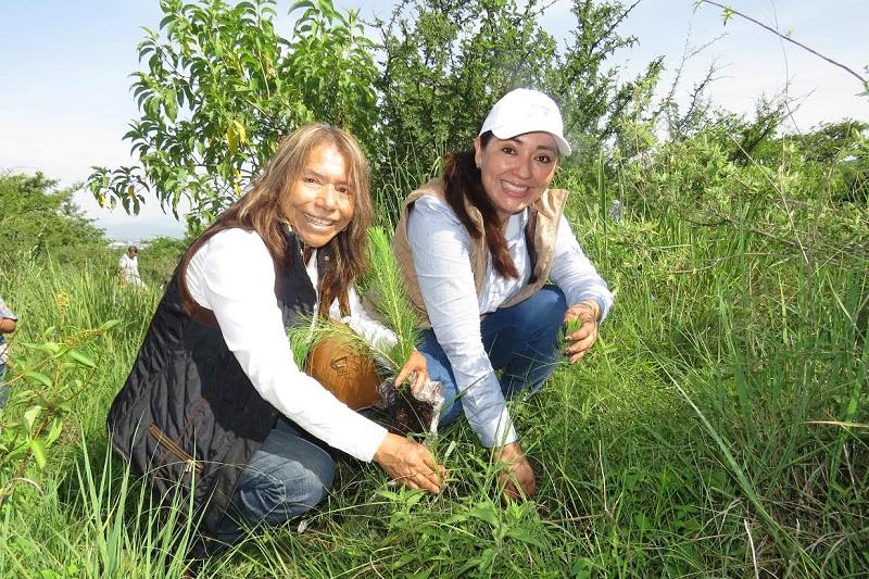 Establecer mayores sanciones a quienes cambien el uso de suelo de manera ilegal para la agricultura o el desarrollo urbano y prevenir los incendios forestales a través de su inclusión en la Política Estatal de Cambio Climático, propuso Noemí Ramírez