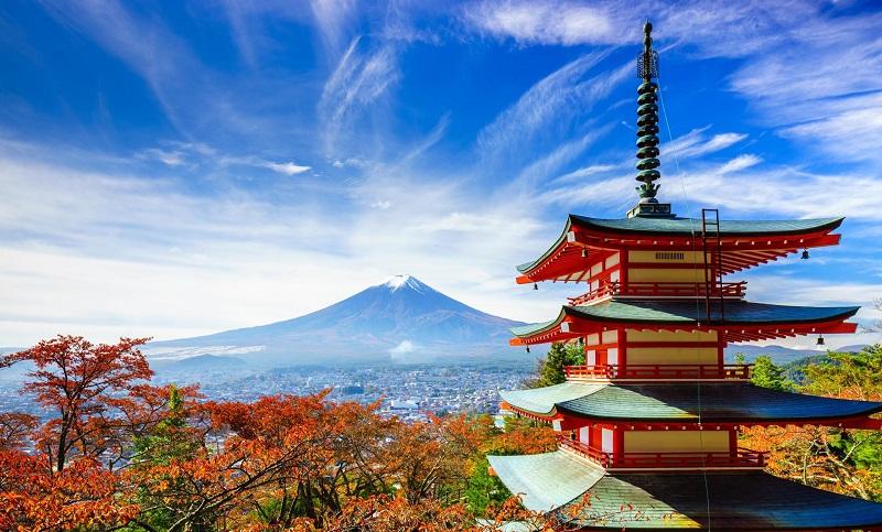 Es requisito indispensable para los interesados en postularse haber nacido después del 2 de abril de 1983, contar con un promedio general no menor de 8.0, así como tener un nivel avanzado de idioma inglés y/o japonés