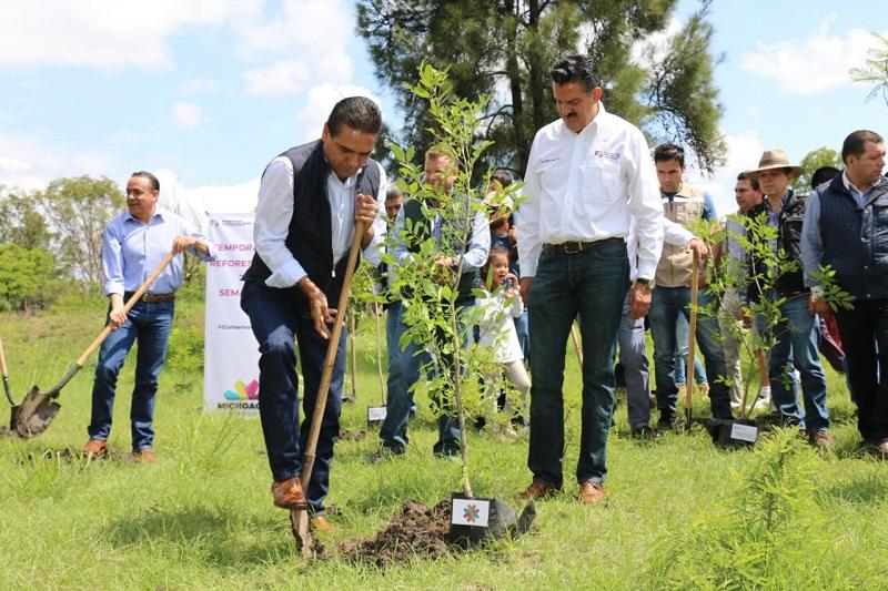 Inicia la campaña de reforestación en Michoacán; serán plantados 25 millones de árboles a favor del medio ambiente