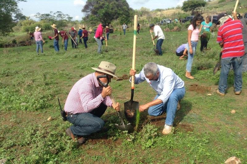 El director general de la Cofom recordó que en esta Temporada de Reforestación, se habrán de plantar 25 millones de arbolitos en la geografía michoacana, con énfasis en 60 municipios