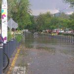 Se registraron al menos un par de vehículos varados en la Avenida Camelinas; además de la caída de un árbol en la Calzada La Huerta
