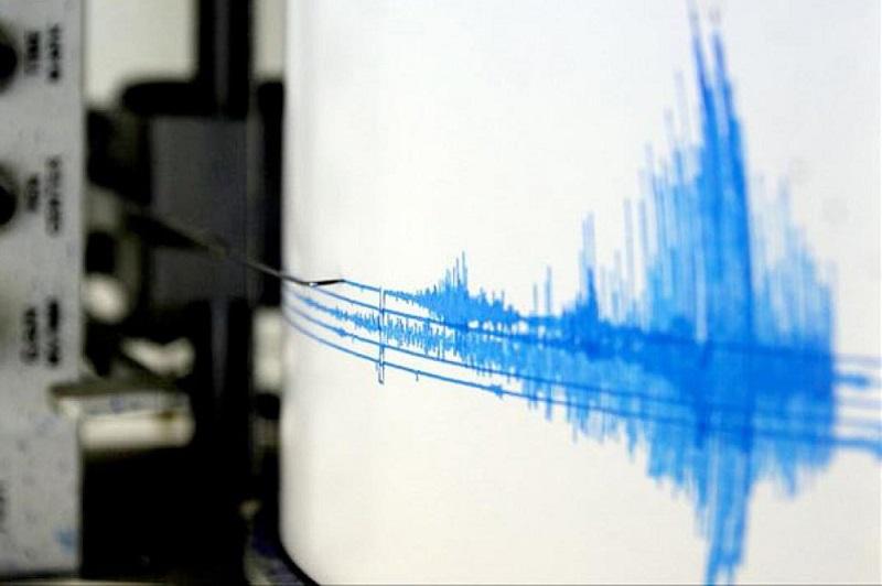 Ante cualquier suceso o reporte, la Coordinación Estatal de PC pide a la población llamar al número telefónico 911 y reitera los pasos de prevención ante sismos