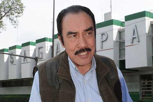 Rodríguez López puntualizó que el país que recibió más importaciones  dicho fruto mexicano fue a EU, con más de 100 mil 700 toneladas