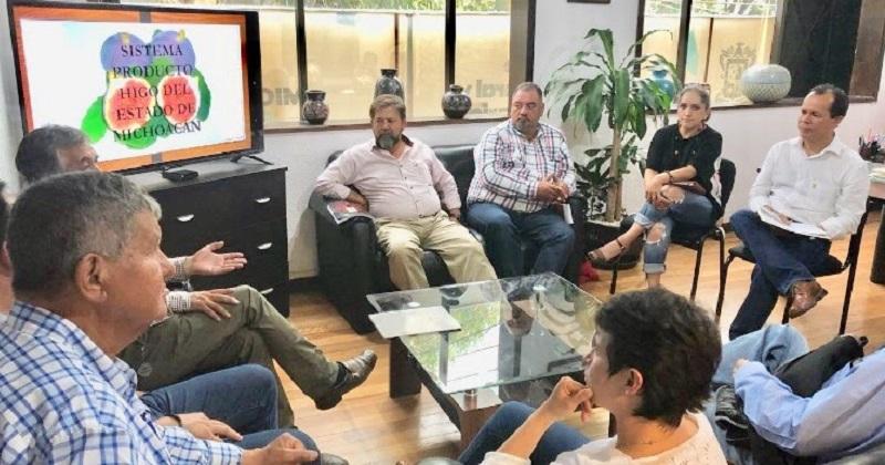 Gracias a la organización y unión de productores, se logró que Michoacán obtuviera la Tesorería del Sistema Producto Higo a nivel nacional