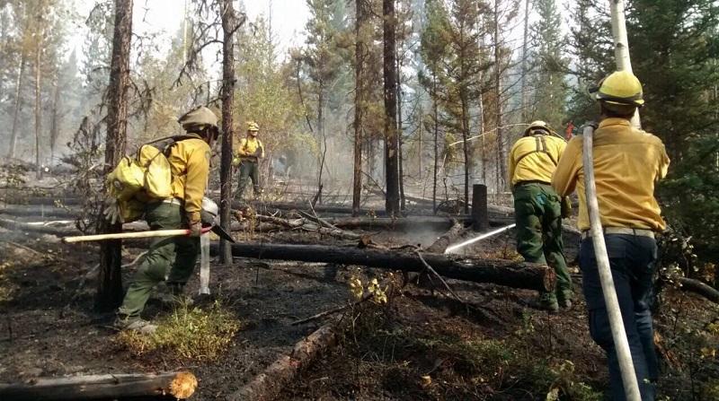 En esta ocasión se movilizarán 105 elementos, de los cuales 100 son combatientes, 4 son técnicos especializados y un representante institucional de la Comisión Nacional Forestal