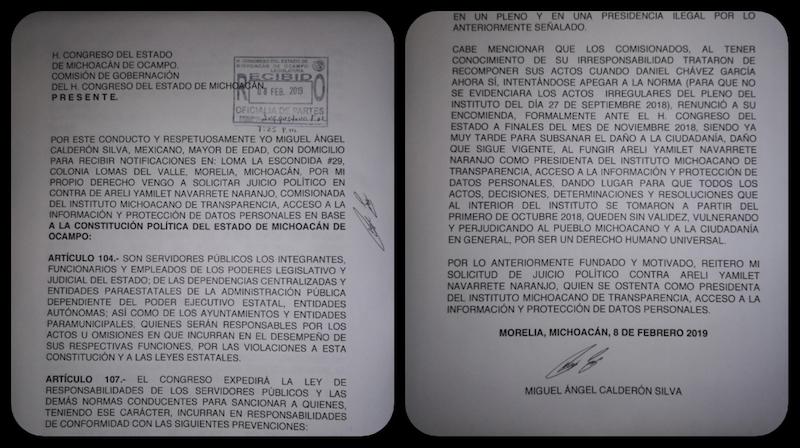 El juicio político que solicita un ciudadano en contra de Navarrete Naranjo, puede llegar hasta su inhabilitación como funcionaria pública