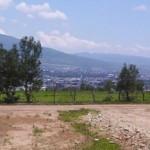 Continúa MCDL su campaña contra la construcción de vialidad en la Loma de Santa María