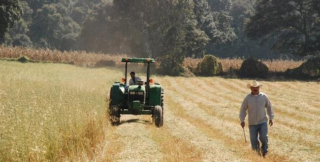 Cano Vega dijo que la agricultura de conservación es un sistema agronómico sustentable que se basa en tres principios fundamentales