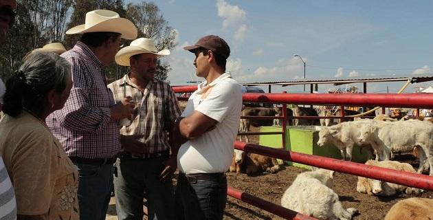 Respecto al programa de Inseminación Artificial, entre los ganaderos se promueve la utilización de inseminación artificial como una herramienta de mejoramiento genético bovino de una manera más rápida y económica