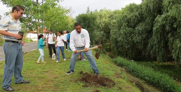 En el primer día de reforestación se lograron plantar 500 árboles en los márgenes del Río Chiquito en las zonas aledañas al cruce entre Calzada Ventura Puente y la Avenida Solidaridad con la participación de 150 personas: Montañez Espinosa