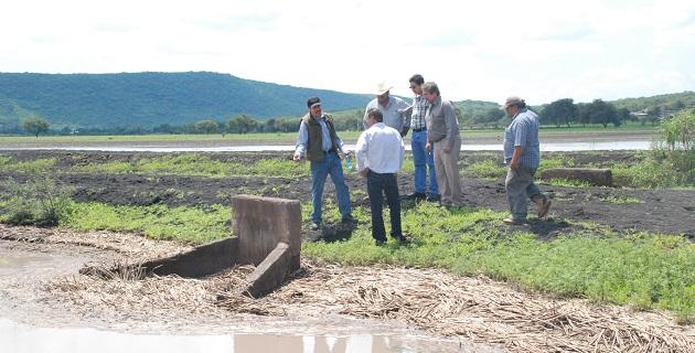 En un reporte inicial por parte de los productores, se registran afectaciones en 2 mil 500 hectáreas por inundaciones, principalmente en cultivos de sorgo y maíz, debido a las fuertes lluvias registradas en la región