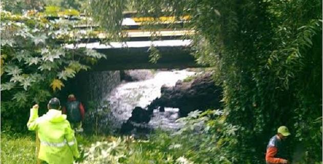 Se realizó la limpieza del dren Arroyo de Tierras, a la altura de la colonia Fresnos Arboledas, en 530 metros lineales del cauce