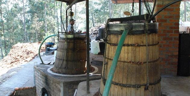 El valor de la producción mezcalera en Morelia asciende a los 7 millones 700 mil pesos, señaló Rodríguez López