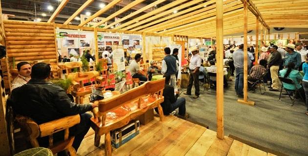 Expo Forestal 2014 es un espacio dedicado al aspecto comercial del sector forestal, que se organizó para facilitar las acciones de compra-venta de todos los productos y servicios que conforman el sector