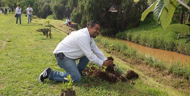 Esta es la segunda reforestación que realiza este año la Asociación de Usuarios del Agua de Morelia; la primera fue en la Avenida Solidaridad, donde se plantaron alrededor de 500 árboles
