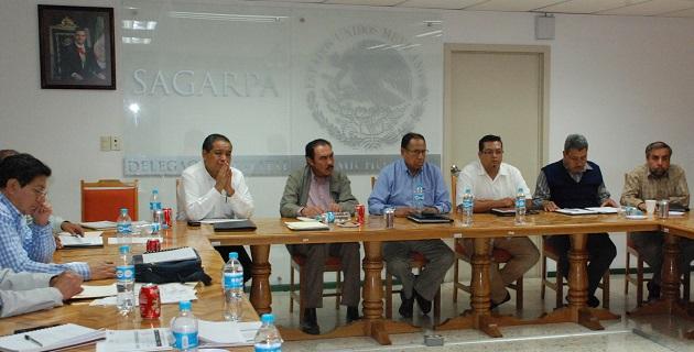 El coordinador de Asesores de SAGARPA, Luciano Vidal García, en compañía, revisó los avances de los proyectos del Agroparque y el de almacenamiento de granos