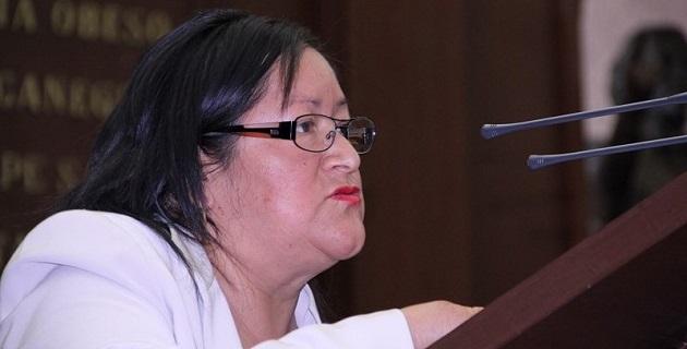 La legisladora, integrante de la Comisión de Pueblos Indígenas de la 72 Legislatura, destacó que es necesario que se conozcan a fondo los programas sociales en materia indígena