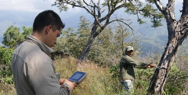 En el año 2006 comenzó a elaborarse dicho inventario, para el cual la Cofom ha realizado estudios en campo, verificaciones aéreas, cotejo de datos e incorporación de cartografías actualizadas